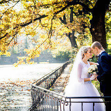 Wedding photographer Larisa Golinska (gull). Photo of 19.11.2014