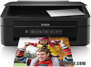 download Epson XP-202 printer's driver