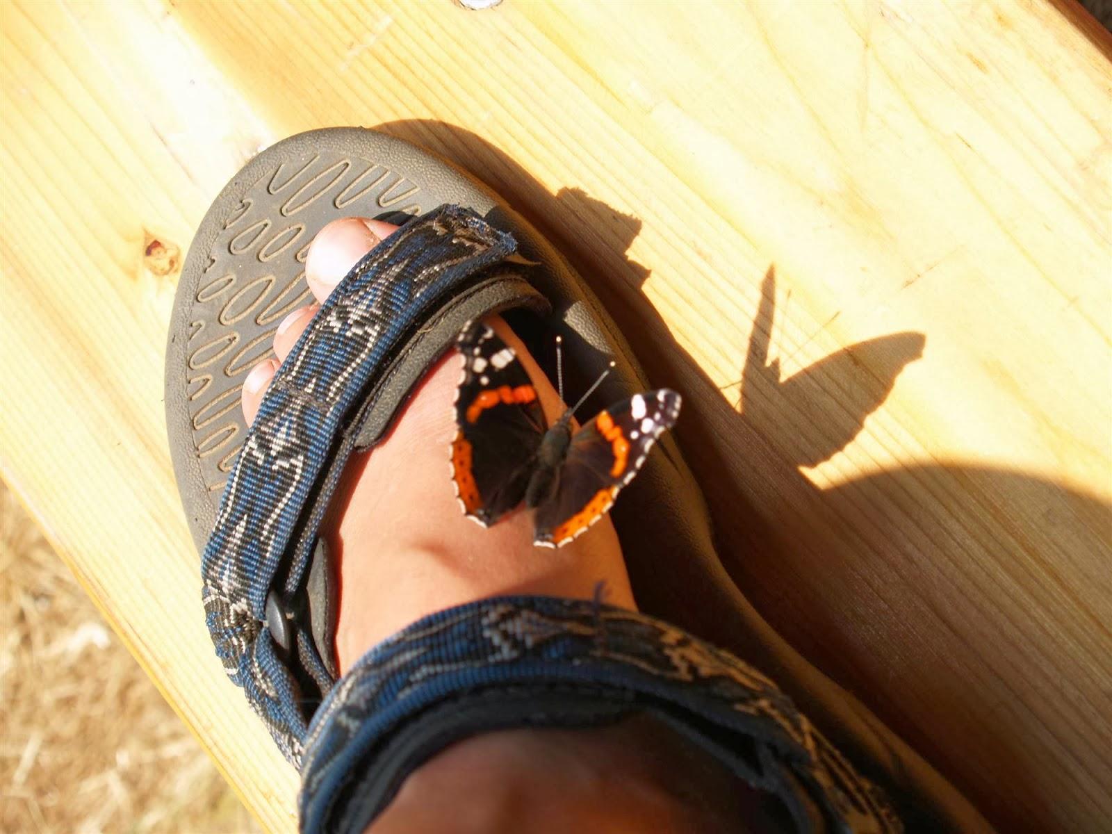 Taborjenje, Lahinja 2006 2.del - P0158617.JPG