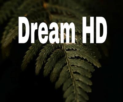 La nouvelle fréquence de la chaine Dream HD sur Nilesat 2022