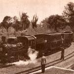 sl_900_026_колію дитячої залізниці.jpg