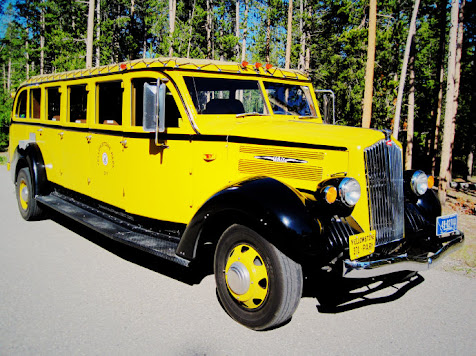 Yellowstone park tourist bus