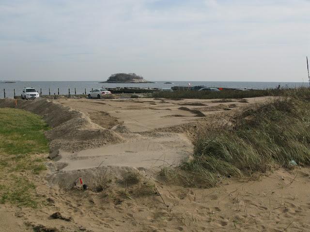 West Wharf Dune Restoration - IMG_8264.JPG