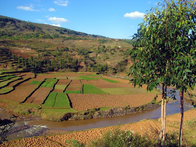 صور من مدغشقر Madagascar 14725383852