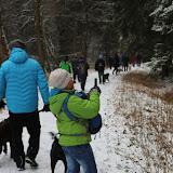 01. Januar 2016: Neujahrswanderung ins Waldnaabtal - IMG_1516.JPG