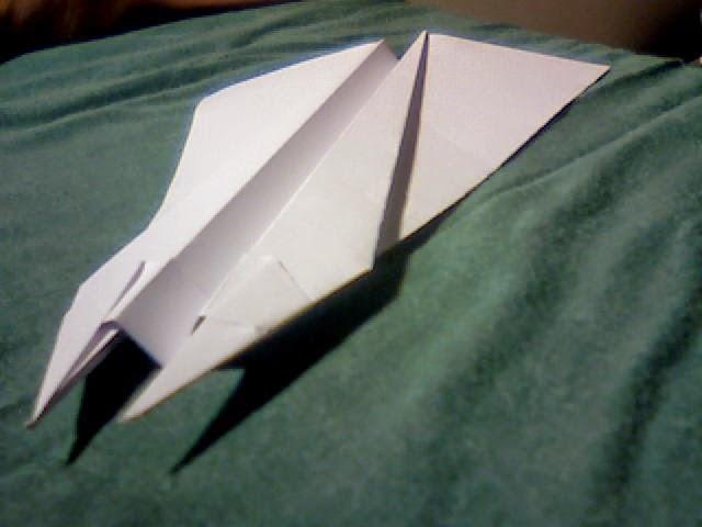 Wing 14