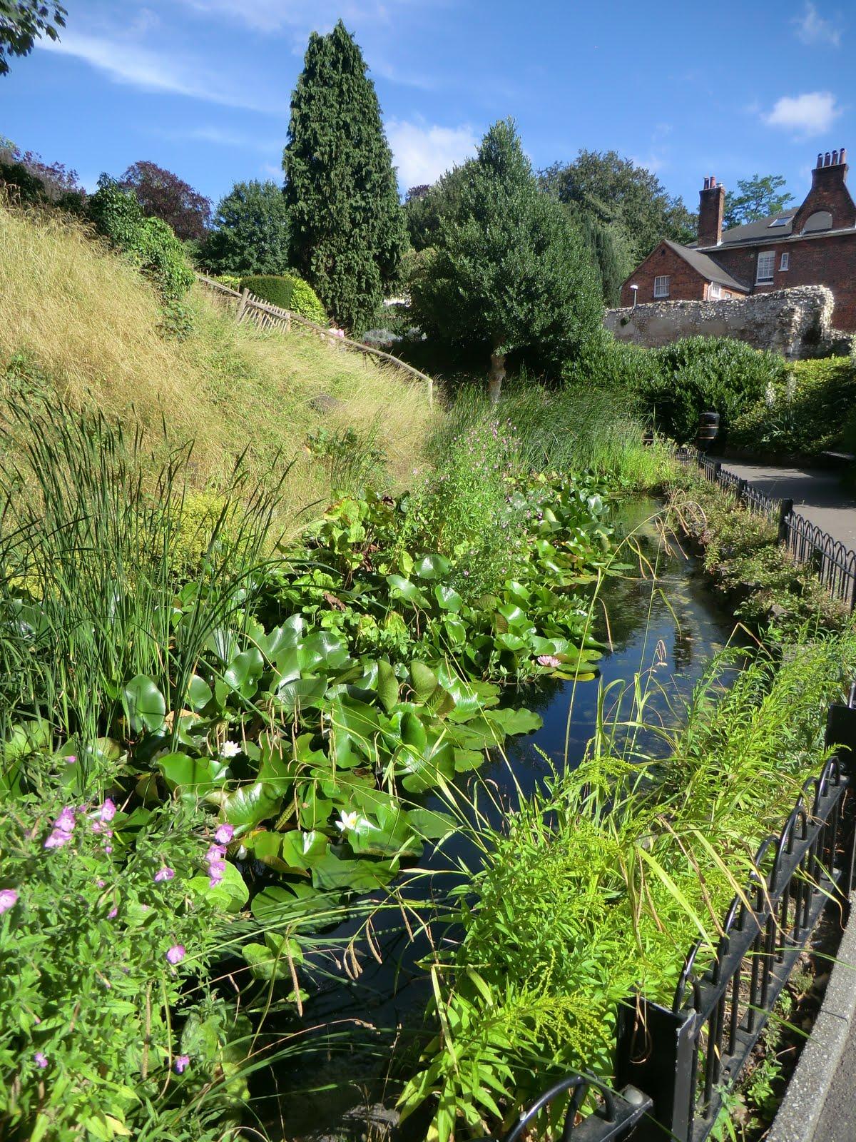CIMG8311 Peak's Pond, Guildford Castle grounds