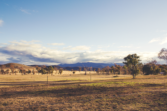 The Brindabella Mountain Range | Lavender & Twill
