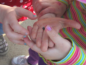 Children hold and touch isopods (pillbugs).