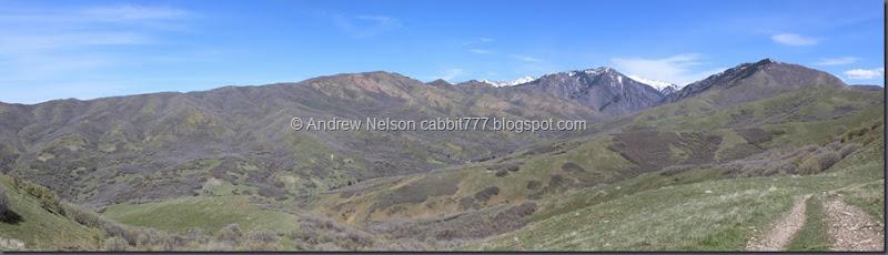 Avenues Twin Peaks 2
