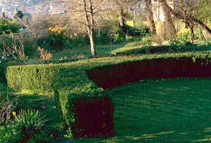 Wingfield Garden