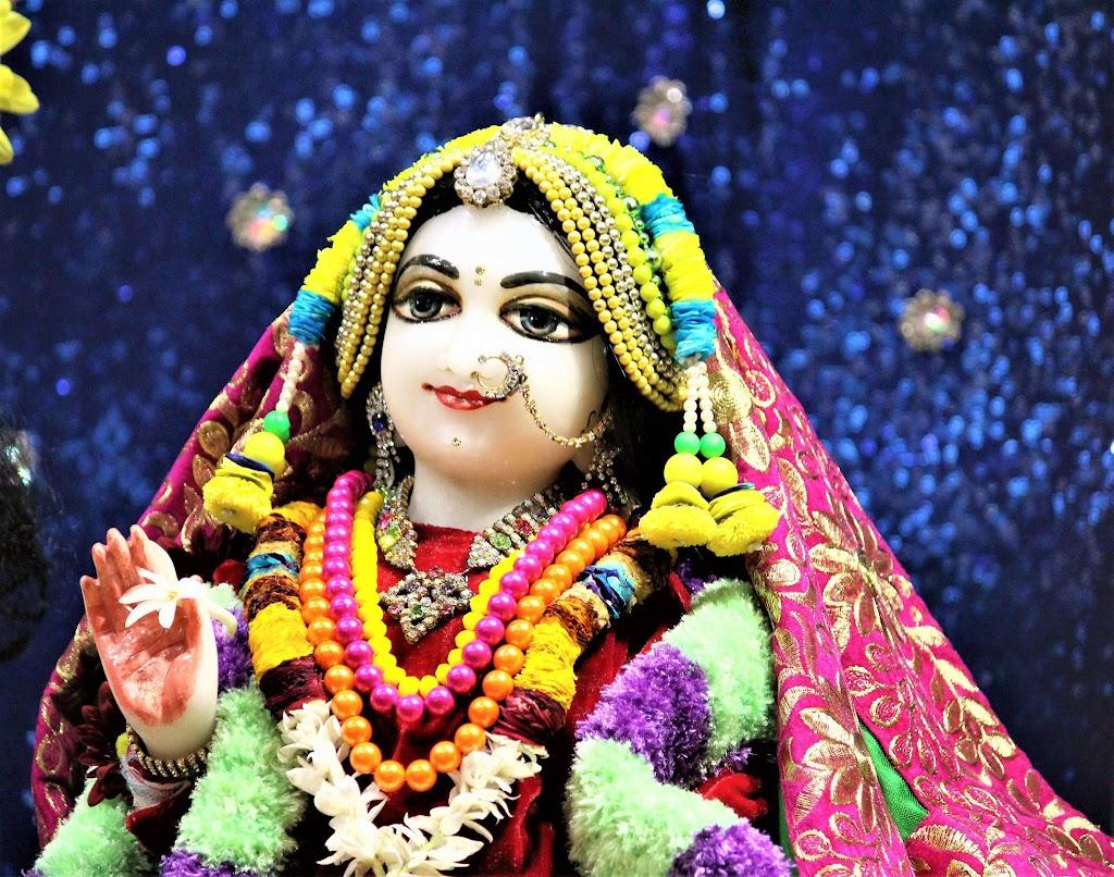 ISKCON Punjabi Bagh Deity Darshan 10 Jan 2017 (7)