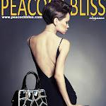 Magazine-style-handbag-ad-061715.jpg