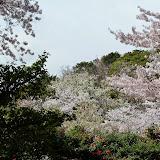 2014 Japan - Dag 7 - mike-P1050654-0190.JPG