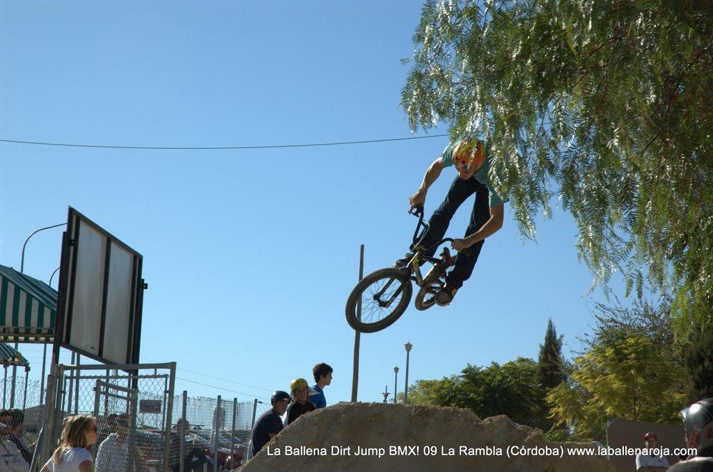 Ballena Dirt Jump BMX 2009 - BMX_09_0062.jpg