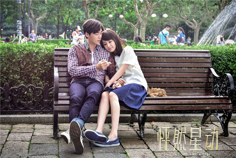 Fall In Love Like A Star China Movie