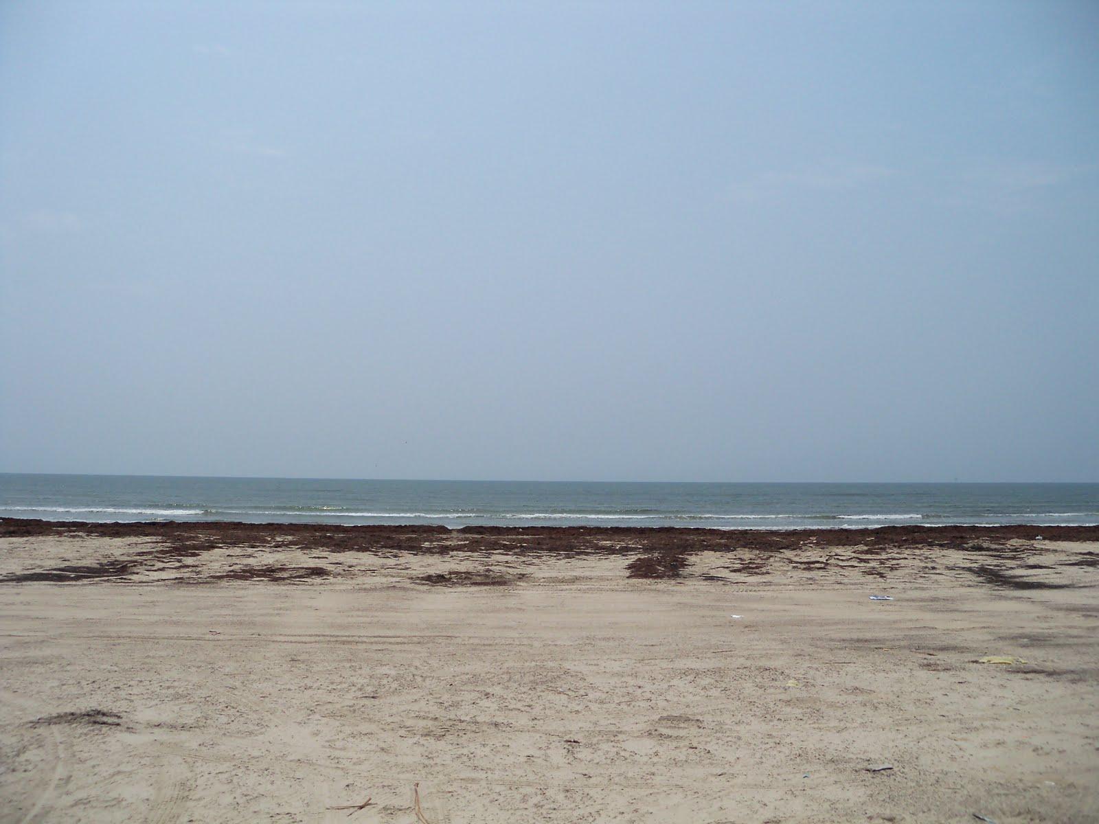 Surfside 2011 - 100_9475.JPG