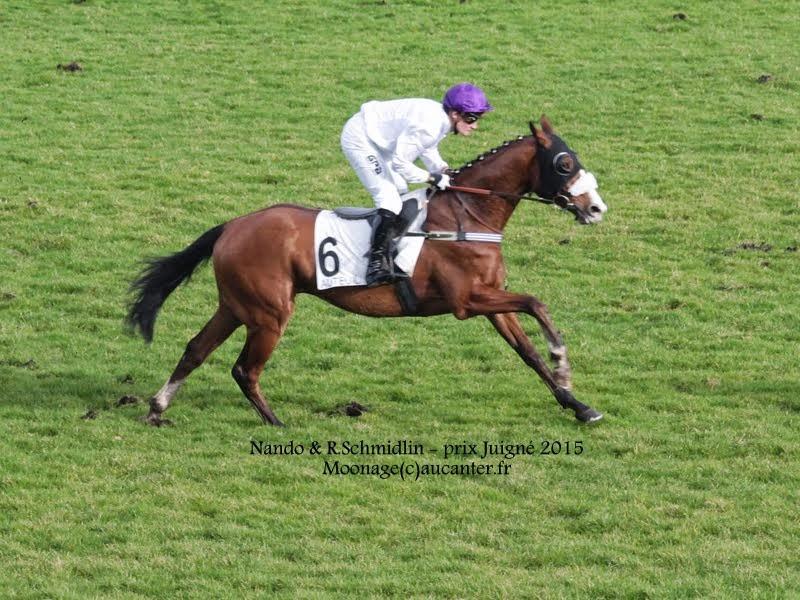Photos Auteuil 1-03-2015 IMG_7134