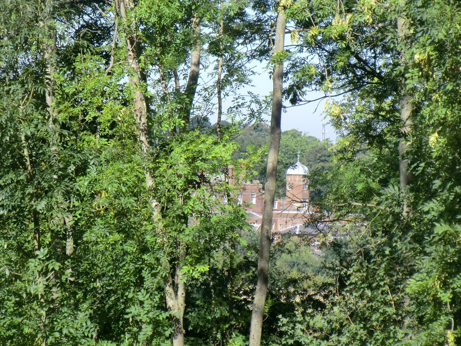 CIMG3875 Cobham Hall through the trees