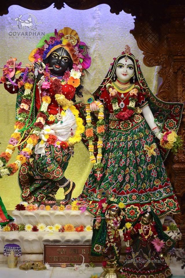 ISKCON GEV (Wada) Deity Darshan 01 Feb 2016  (4)