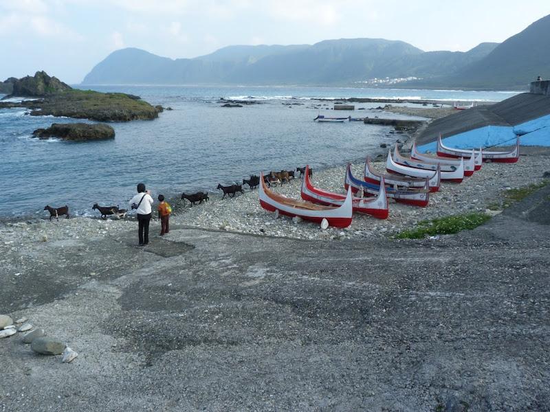TAIWAN Ile de Lanyu - P1010328.JPG