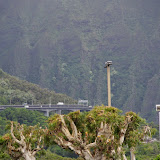 06-18-13 Waikiki, Coconut Island, Kaneohe Bay - IMGP7000.JPG