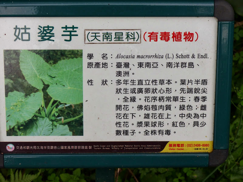 Yangminshan Shitoushan et Jinshan - P1050046.JPG