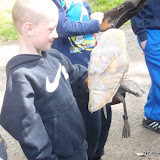 District Cub Camp - May 2015