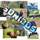 Adivina El Animal - Sonidos (game)