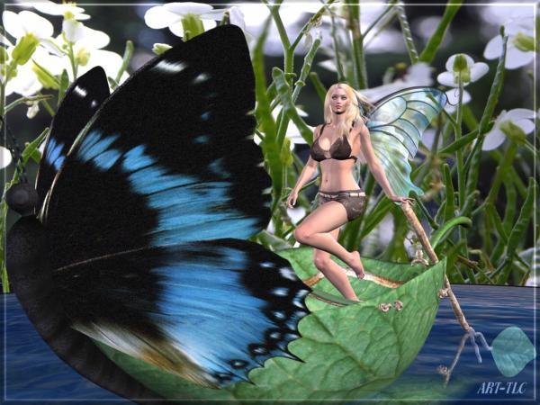 Glamorous Faerie Eyes, Fairies 2