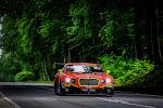 racewagen in bos