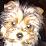 pilar mas's profile photo