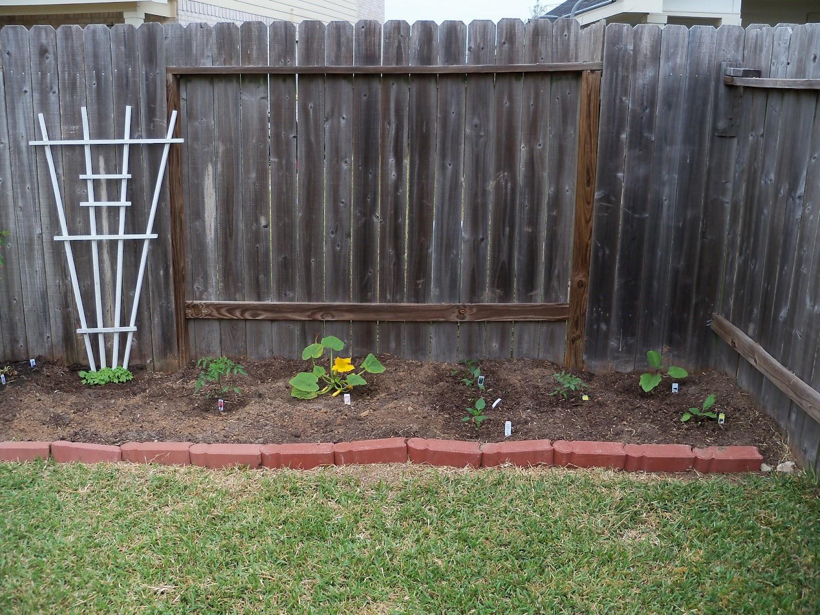 Gardening 2011 - 100_6770.JPG