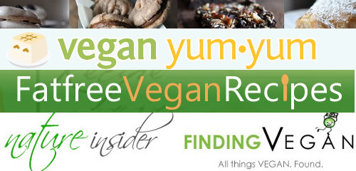 Websites for vegetarian recipes