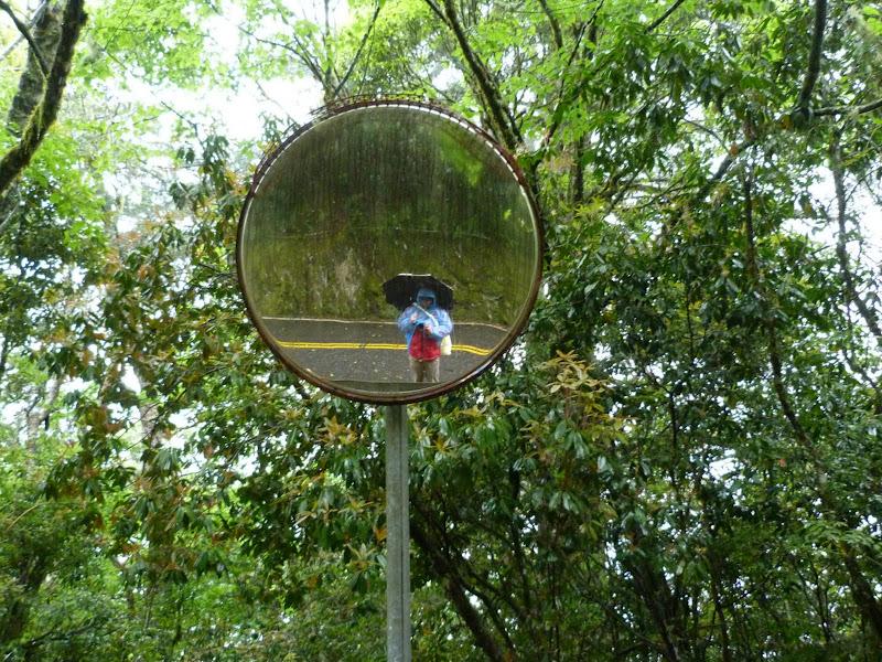 TAIWAN. Weekend Randonnée, Taipei à  Hehuanshan en passant par Puli, retour par les gorges de Taroko - P1280963.JPG