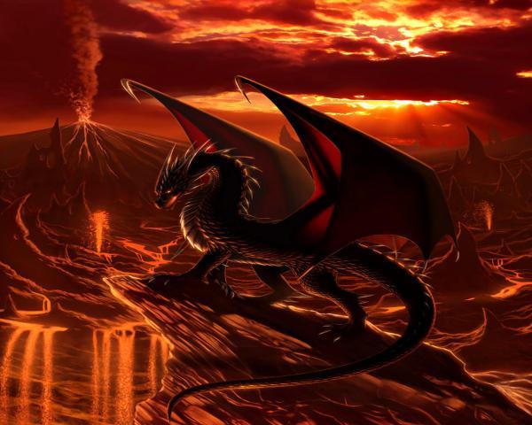 Dragon On Flame, Dragons