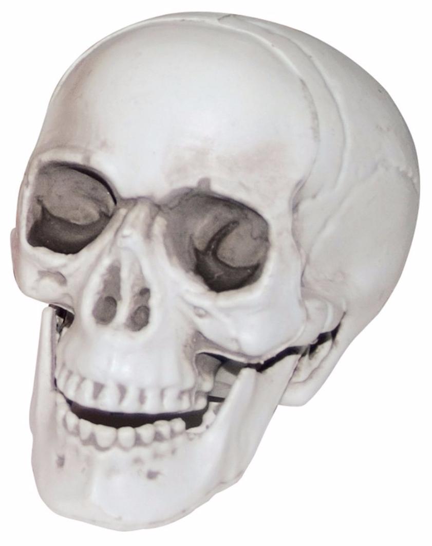DIY Halloween Decoration - Plastic Skull