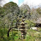 2014 Japan - Dag 7 - tom-SAM_0441-0015.JPG