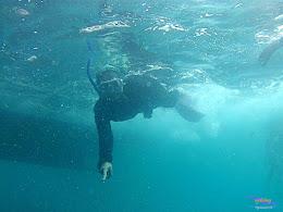 pulau harapan, 6-7 juni 2015 gopro 019