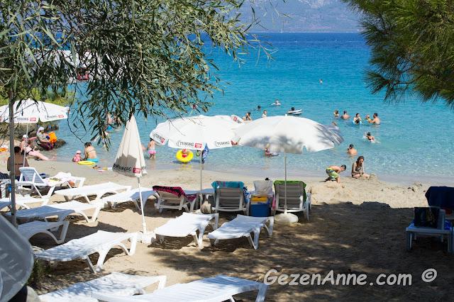 İncekum plajının incecik kumu ve çam, zeytin gölgesindeki denize nazır şezlonglar, Marmaris