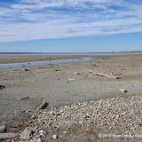 01-19-13 Hagerman Wildlife Preserve and Denison Dam - IMGP4041.JPG