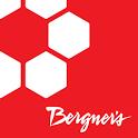 Bergner's icon