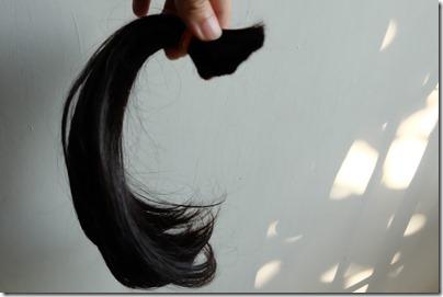 A new hair cut