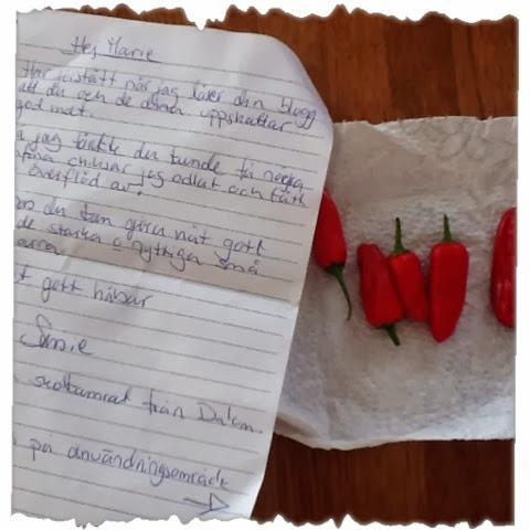 fest glad slutmassage kondom nära Södertälje