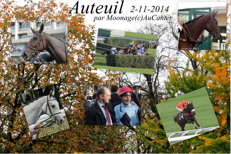 Photos Auteuil 2-11-2014 (48h de l'obstacle) 6%252520-%252520Prix%252520La%252520Haye%252520Jousselin