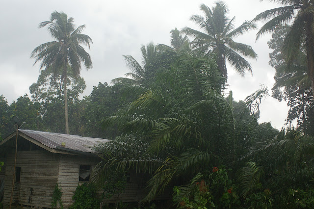 Pluie sur Sukau, 15 août 2011. Photo : J.-M. Gayman