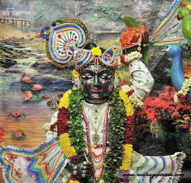 ISKCON Chowpatty Deity Darshan 20 Dec 2015 (14)
