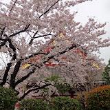 2014 Japan - Dag 5 - marjolein-DSC03550-0036.JPG