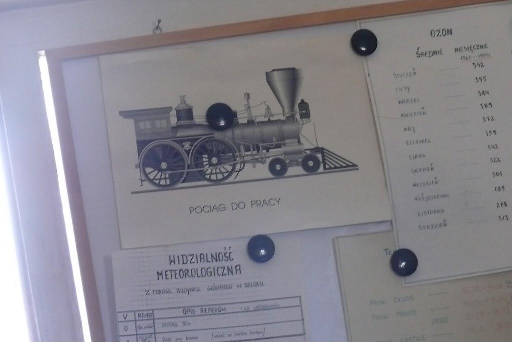Belsk - Świerk 2011 (SB) - P1060024.JPG