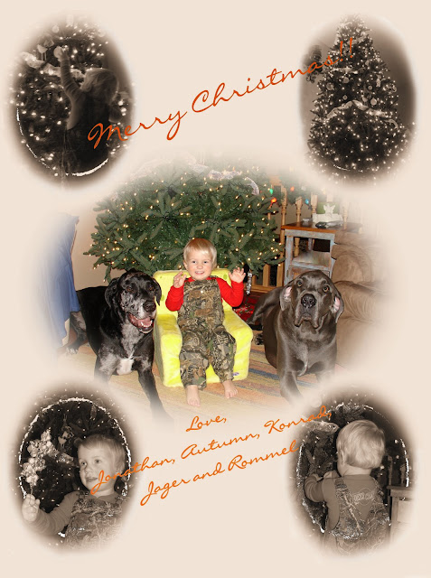 The Dynamite Danes Family! - Christmas%2BCard.jpg